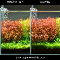 KAMINATURE-Sustrato-para-acuarios-Ada-aqua-soil-Amazonia-Light-Powder-001