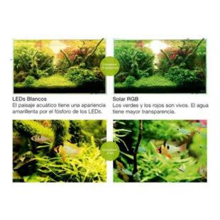 kaminature-Iluminación-LED-para-acuarios-plantados-ADA-Solar-RGB-003