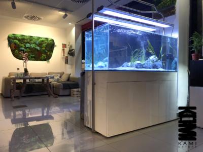 Tienda de acuariofilia en Sevilla