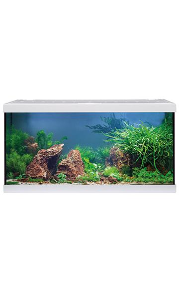 acuario eheim aquastar 54 led blanco 2