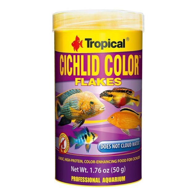 Comida peces Cichlid color