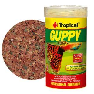 Tropical Guppy comida para estos peces