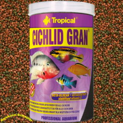 Tropical Cichlid Gran