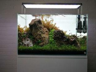 The lightground iluminación LED trasera para acuarios