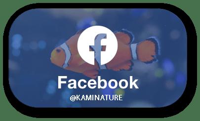 facebook-kaminature