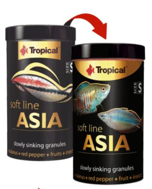 peces asia