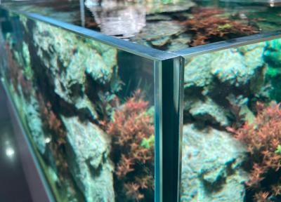 mejor cristal acuario